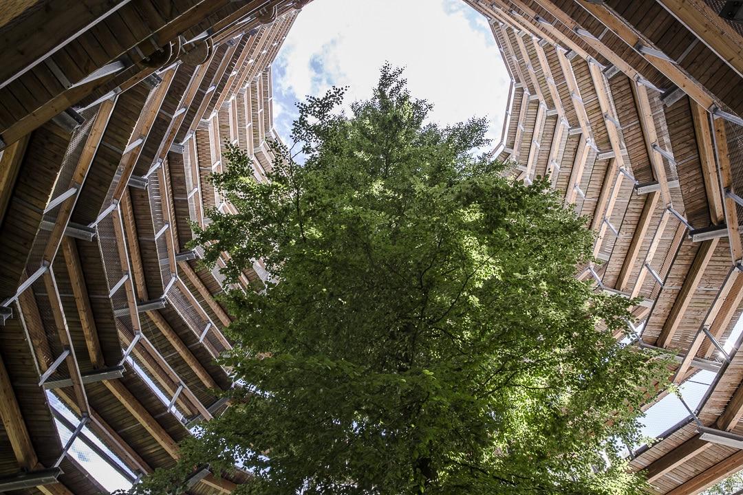 Centre de la nature Ruegen, Allemagne