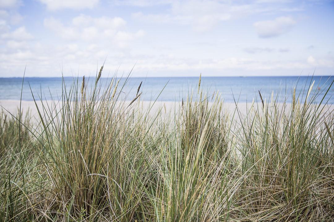 La plage de Moor - Ruegen, Allemagne