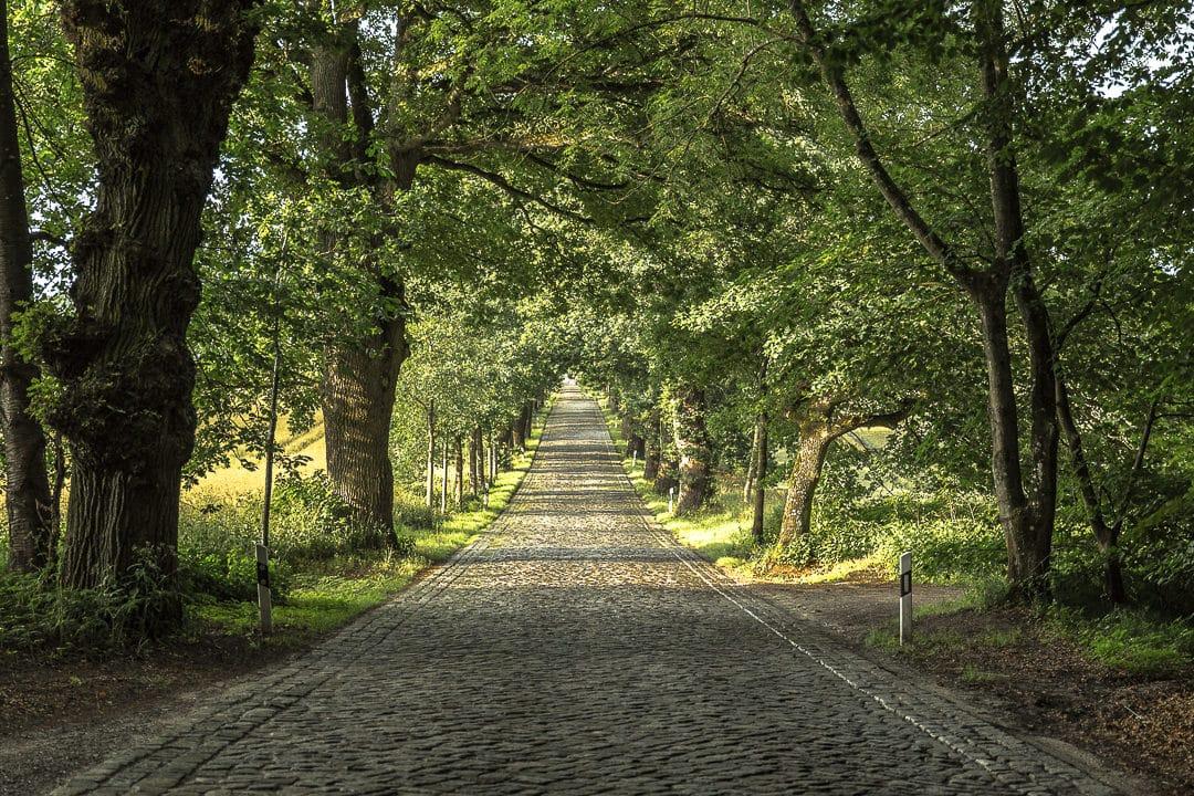 Petite route pavée, typique à Rügen
