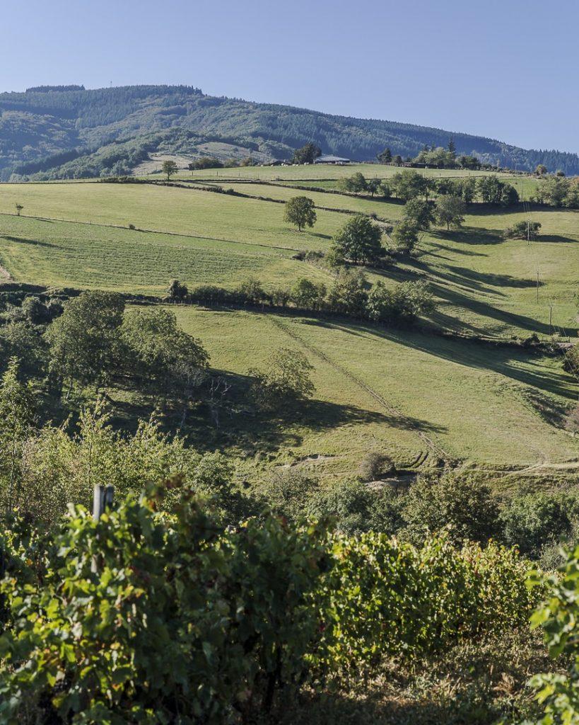 Week-end dans la Loire : découverte de Sainte Croix en Jarez dans le parc naturel régional du Pilat - Loire, France