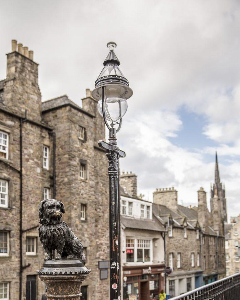 Greyfiard le chien célèbre d'Edimbourg