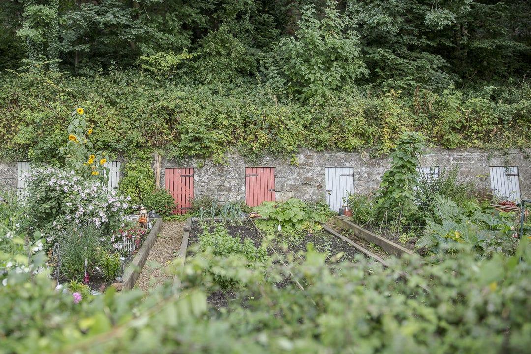 Jardins partagés Dean Village