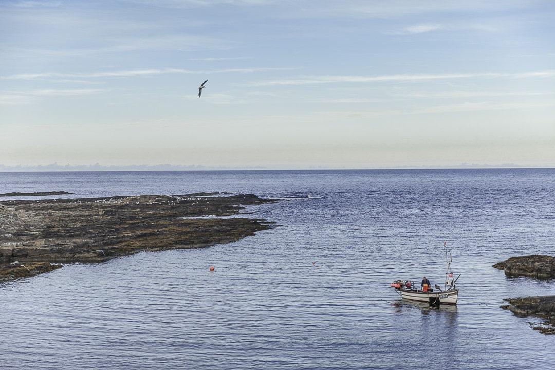 Port de Saxtigoe à Caithness en Ecosse