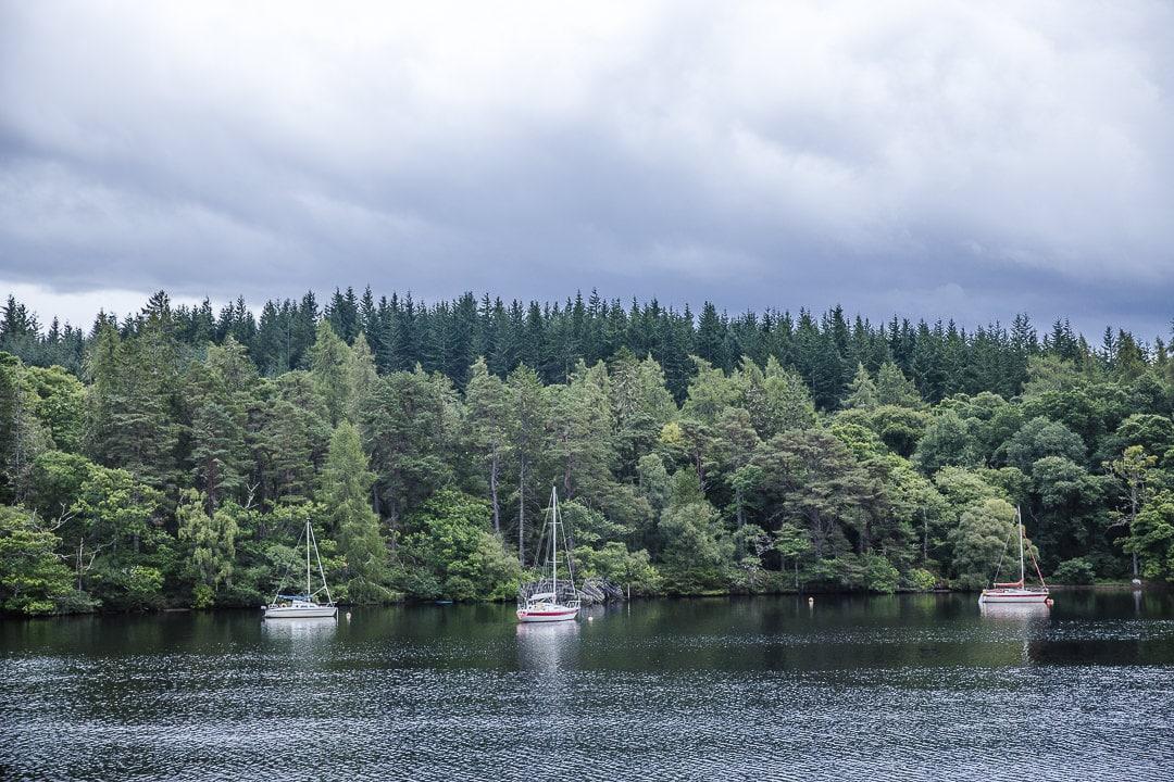 Dégradés de vert sur les bords du Loch Ness - Inverness, Ecosse