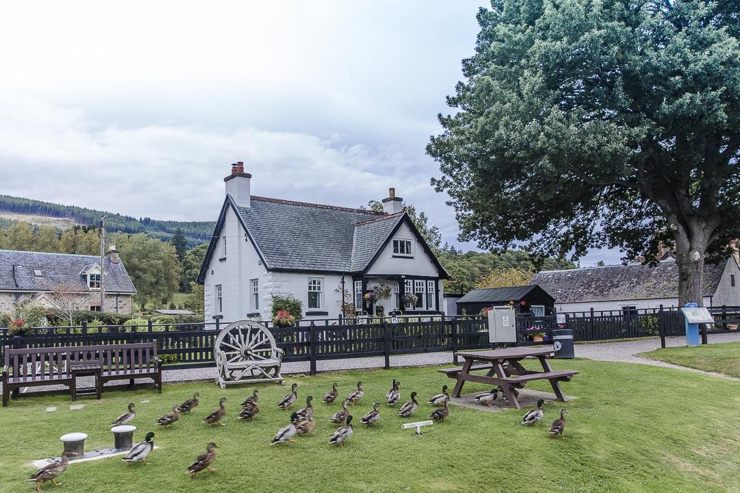Cottage sur les bords du Loch Ness - Inverness, Ecosse