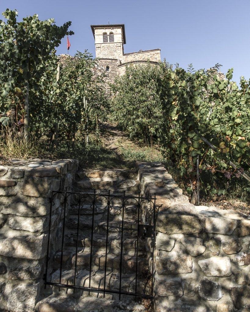 Porte vers les vignes du prieuré de Saint Romain le Puy - Loire, France