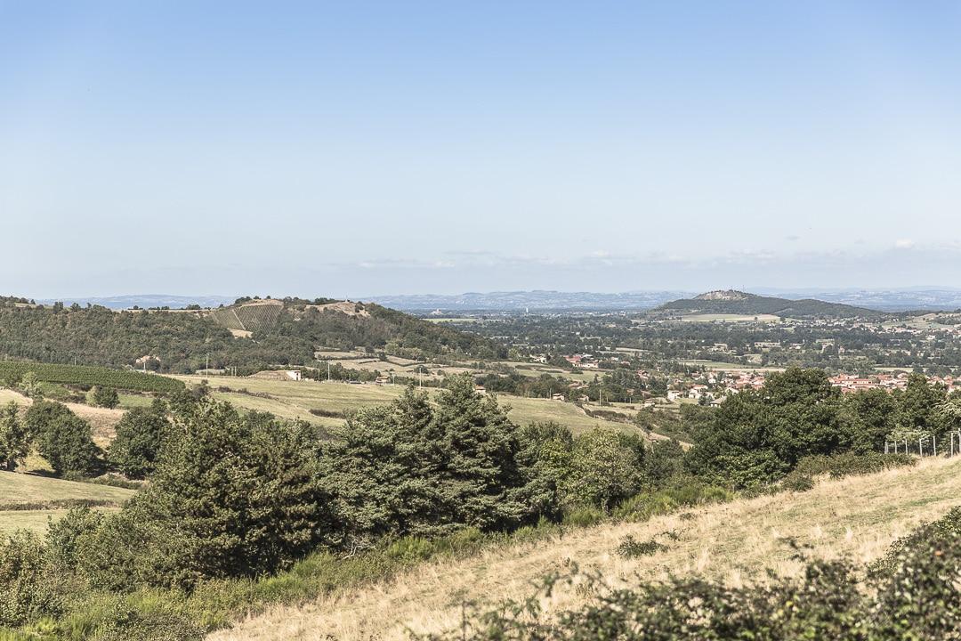 Vue sur Champdieu depuis l'exploitation de Gilles Bonnefoy, vigneron bio - Loire, France