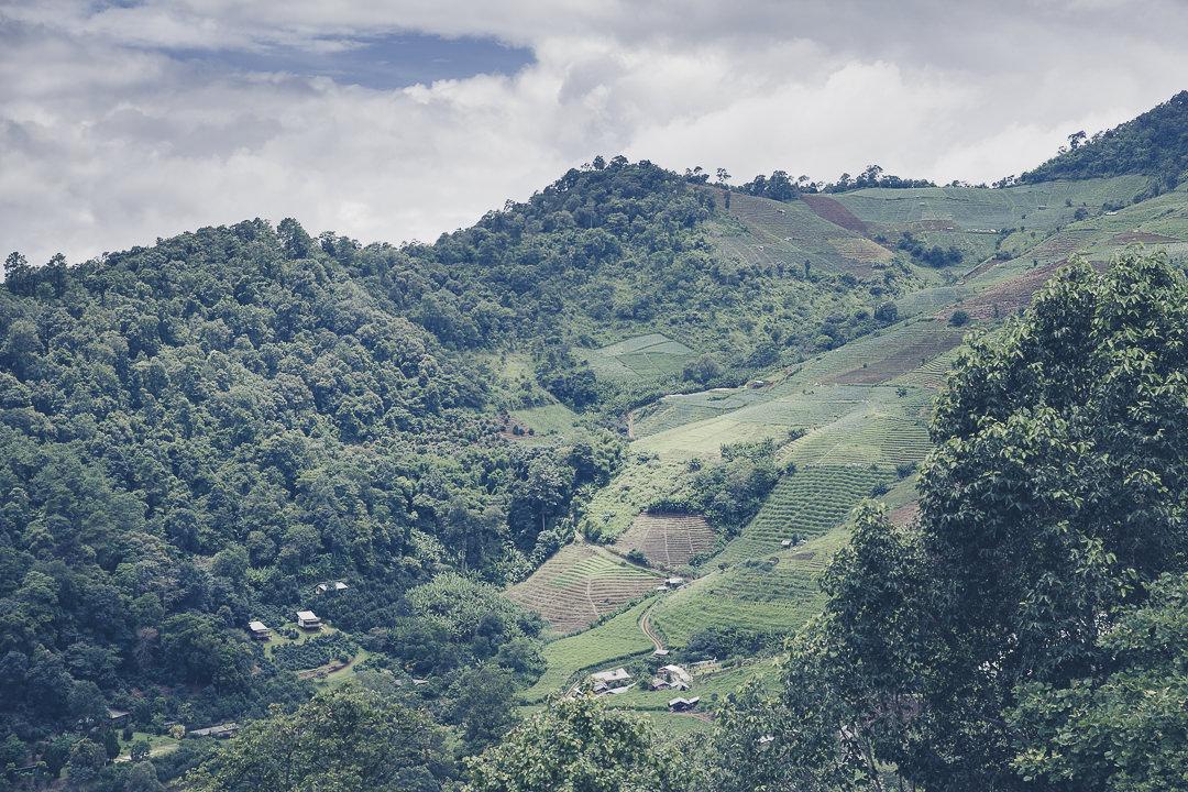 Vue sur les montagnes du nord de la Thaïlande depuis le restaurant du resort Baan Mon Muan