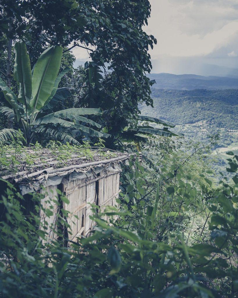 vue verdoyante sur les montagnes du nord de la thailande