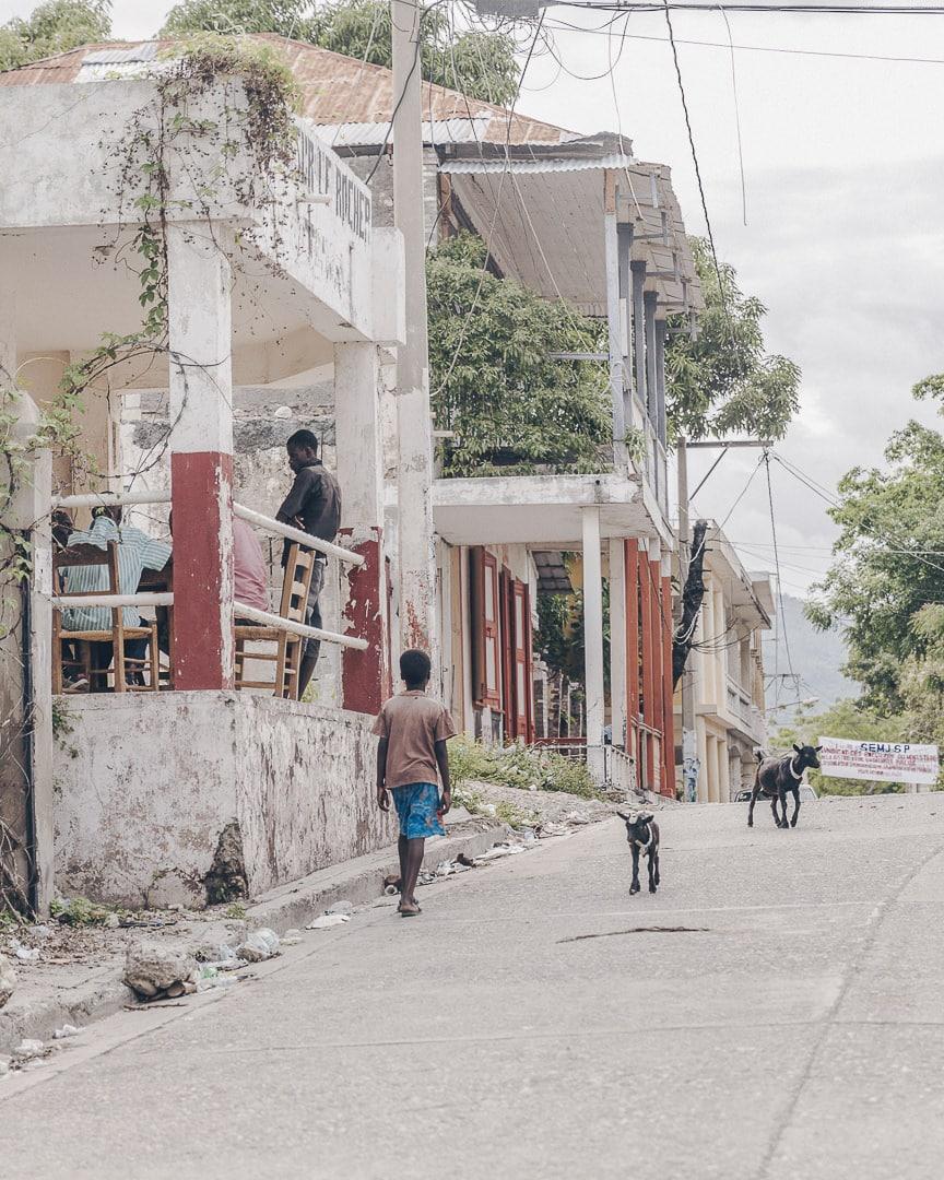 Le petit garçon et les chèvres - Jacmel, Haïti