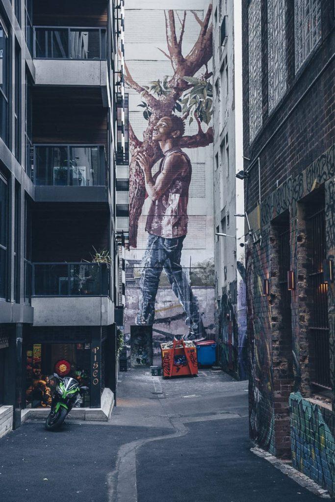 Oeuvre de Fintan Magee vers ACDC Lane - Melbourne, Australie