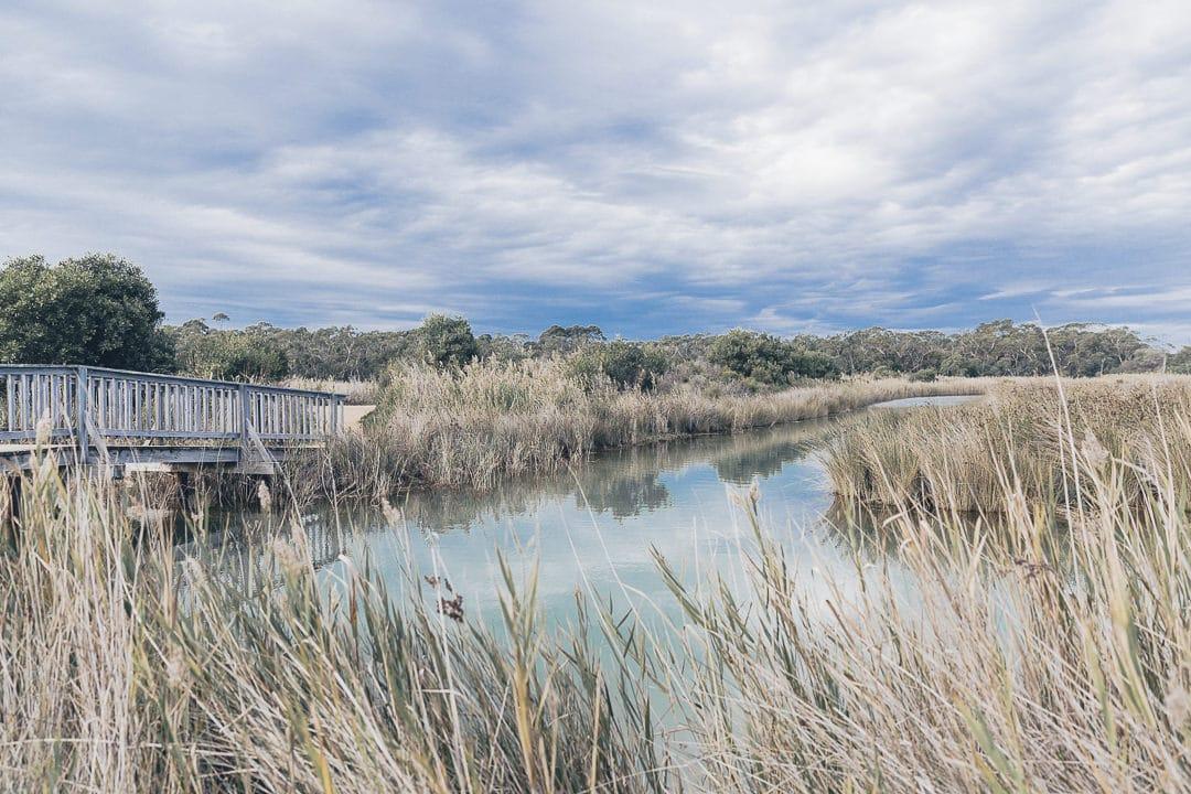 Réserve naturelle de Coogoorah Park - Great Ocean Road Australie