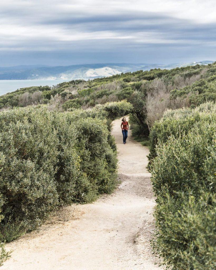 Promenade au phare de split Point - Great Ocean Road, Australie