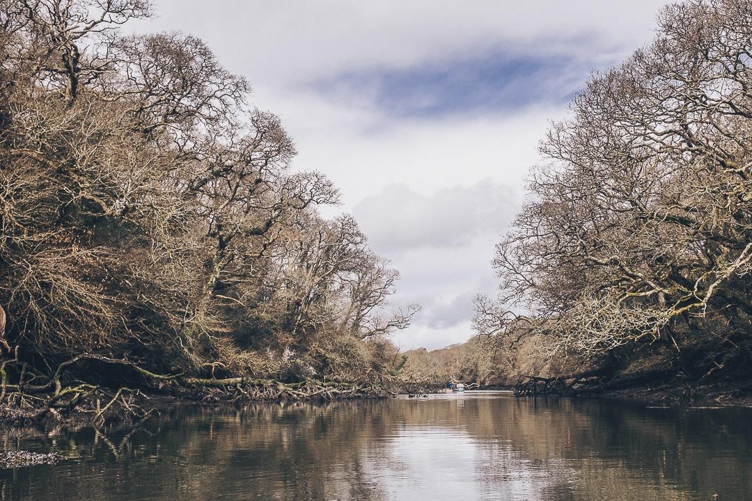 Frenchman's creek, Cornouailles - Angleterre #lovecornwall #VisitBritain