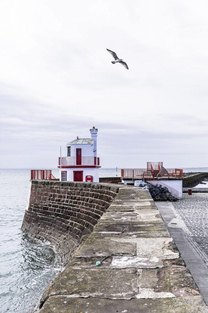 A l'entrée du port de Arbroath, un joli phare rouge au-dessus duquel volent les mouettes à l'affût d'un petit poisson qui serait intentionnellement relaché par les pêcheurs... Elles volent, elles chantent et animent le port paisible en ce matin d'automne. #lovegreatbritain #scotspirit