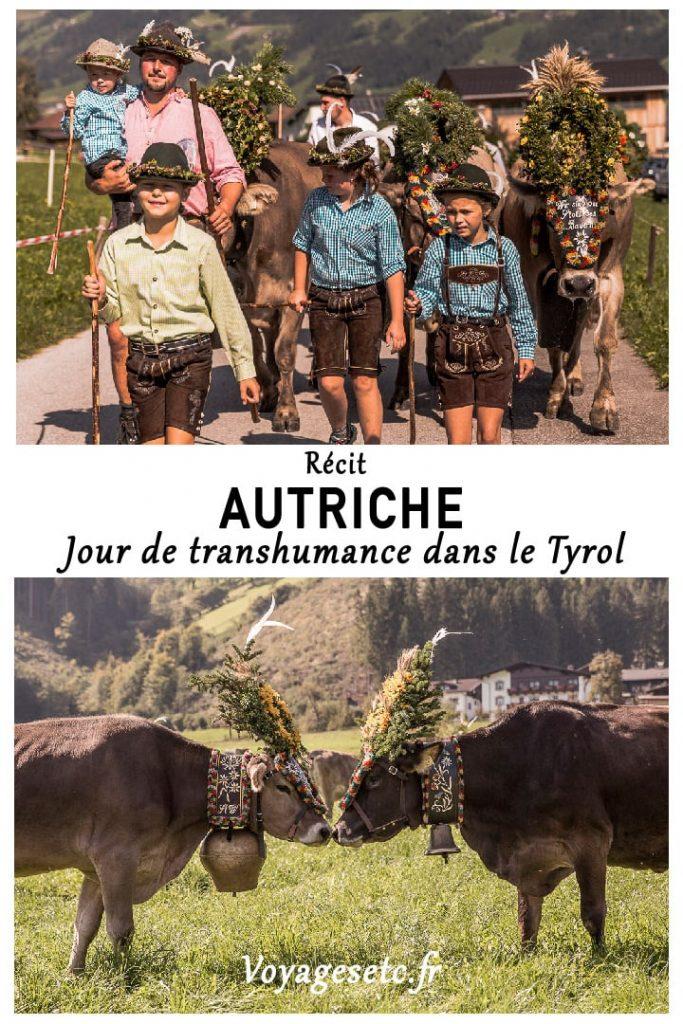 Assister aux fêtes de la transhumance dans le Tyrol dans la vallée de Zillertal #transhumance #tyrol