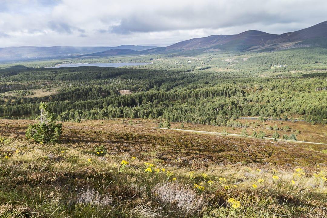 les sublimes highlands #visitscotland #ecosse #highlands