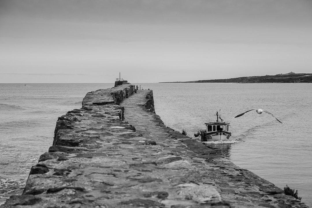 Retour de pêche à Saint Andrews #visitscotland #ecosse