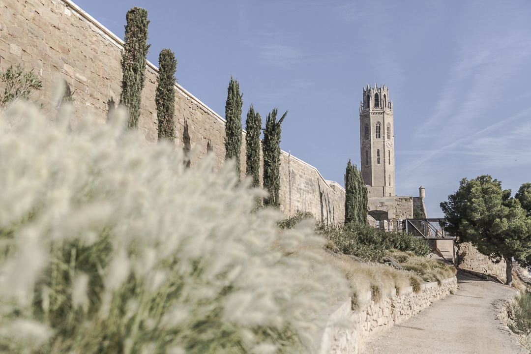 Cathédrale de Lleida, Catalogne @catalogne #macatalogne