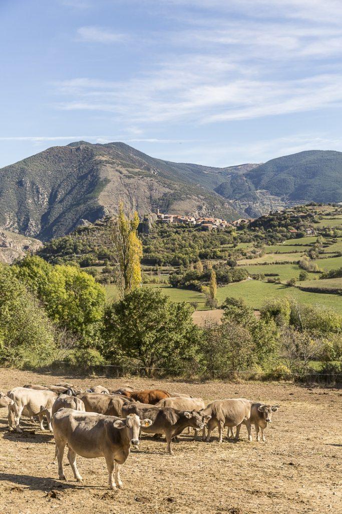 village de Paramea, Catalogne #roadtrip #catalogne