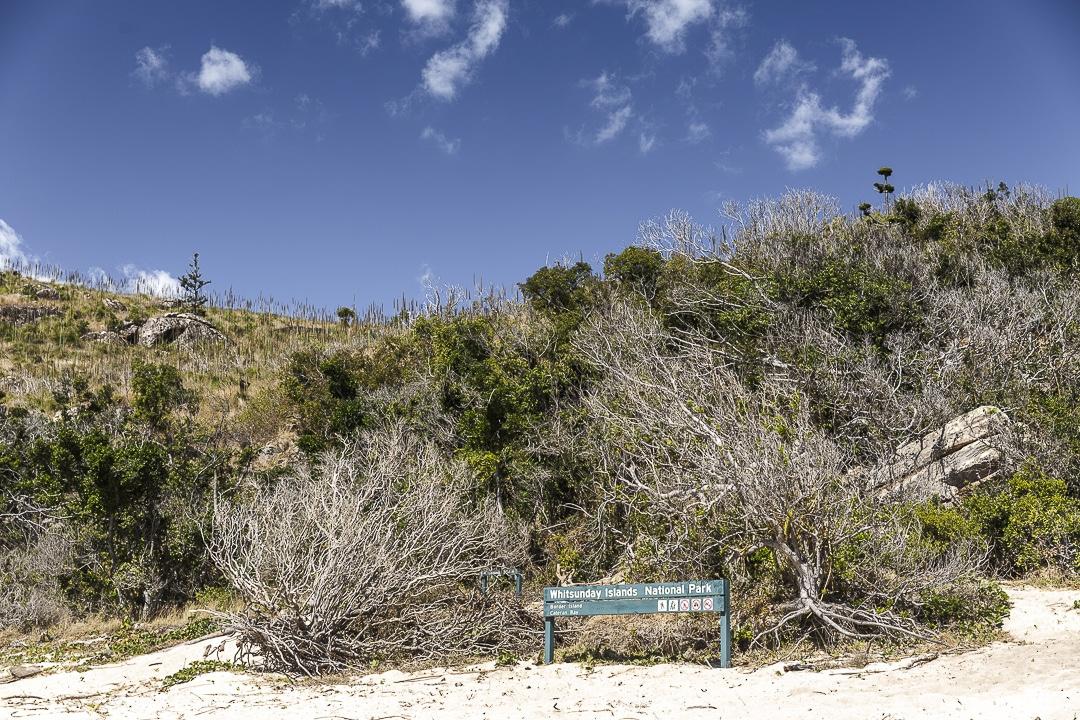 Cataran bay sir Border Island dans les iles Whitsundays #australie #queensland