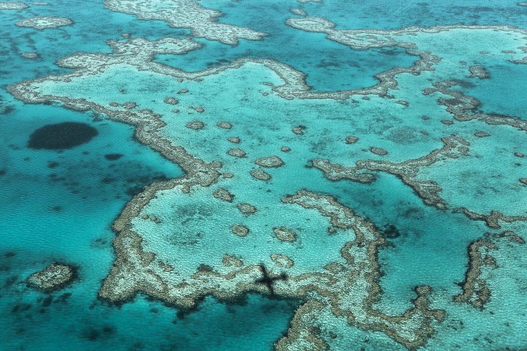 Survoler la grande barrière de corail en Australie, un moment unique bien que furtif #australie #grandebarrieredecorail