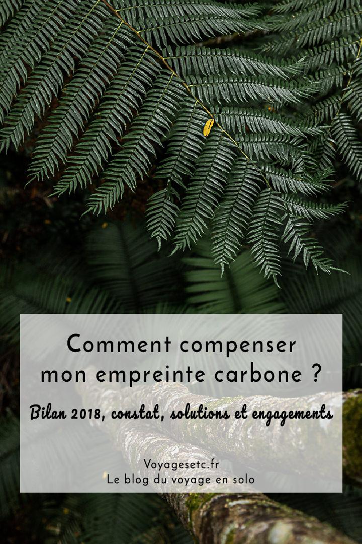 Comment compenser carbone mes voyages ? Bilan 2018, constat, solutions et mes engagements