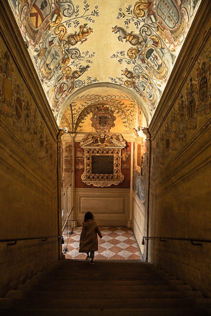 Escaliers du palazzo dell'Archiginnasio à Bologne, 1ère université d'Europe #inemiliaromagna