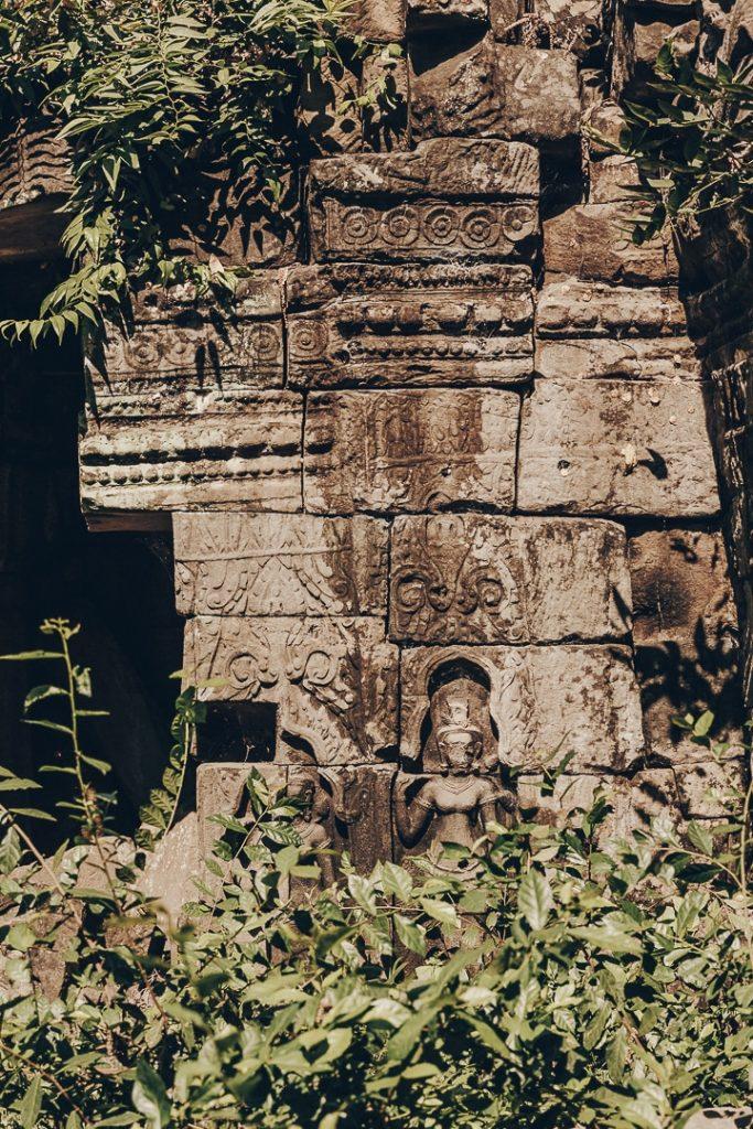 Détail du temple de Banteay Chhmar au Cambodge pris dans la végétation