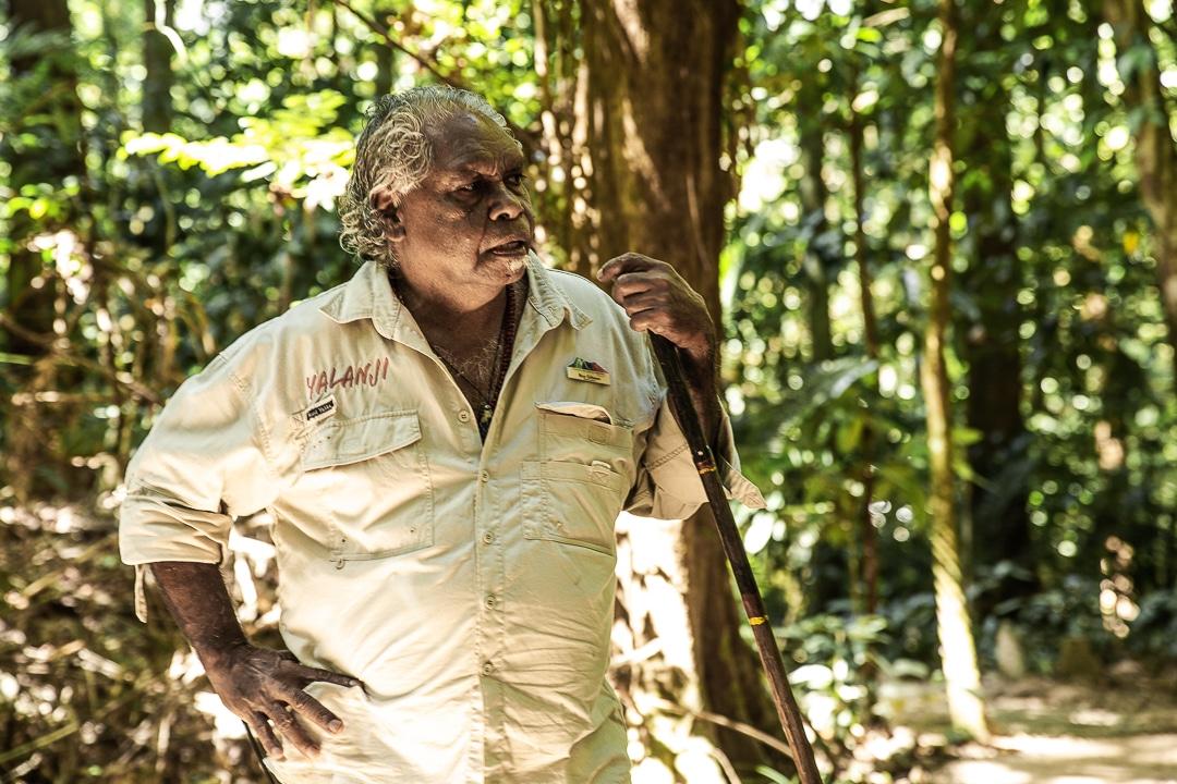 Roy Gibson, créateur des dreamtime walks au coeur des gorges de Mossman dans le Queensland #australie