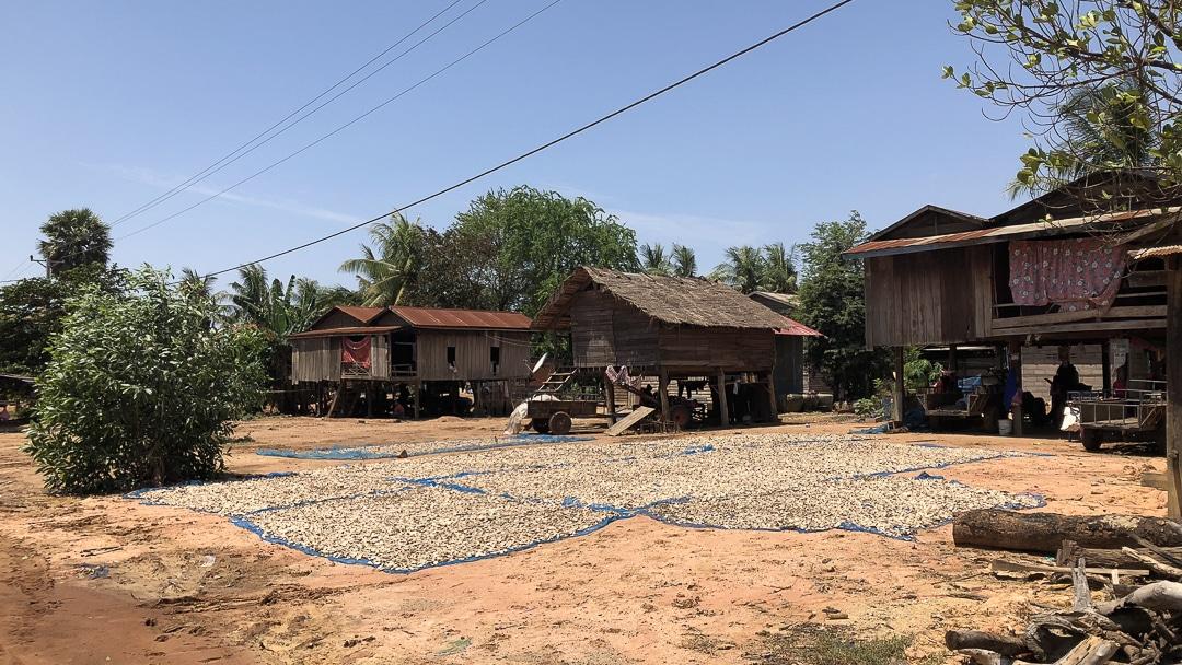 Vie simple du village de Banteay Chhmar au Cambodge