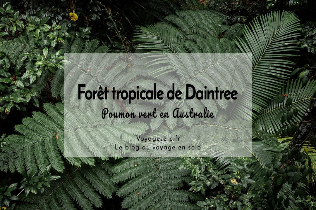 La forêt tropicale de Daintree, le poumon vert de l'australie #voyage #australie