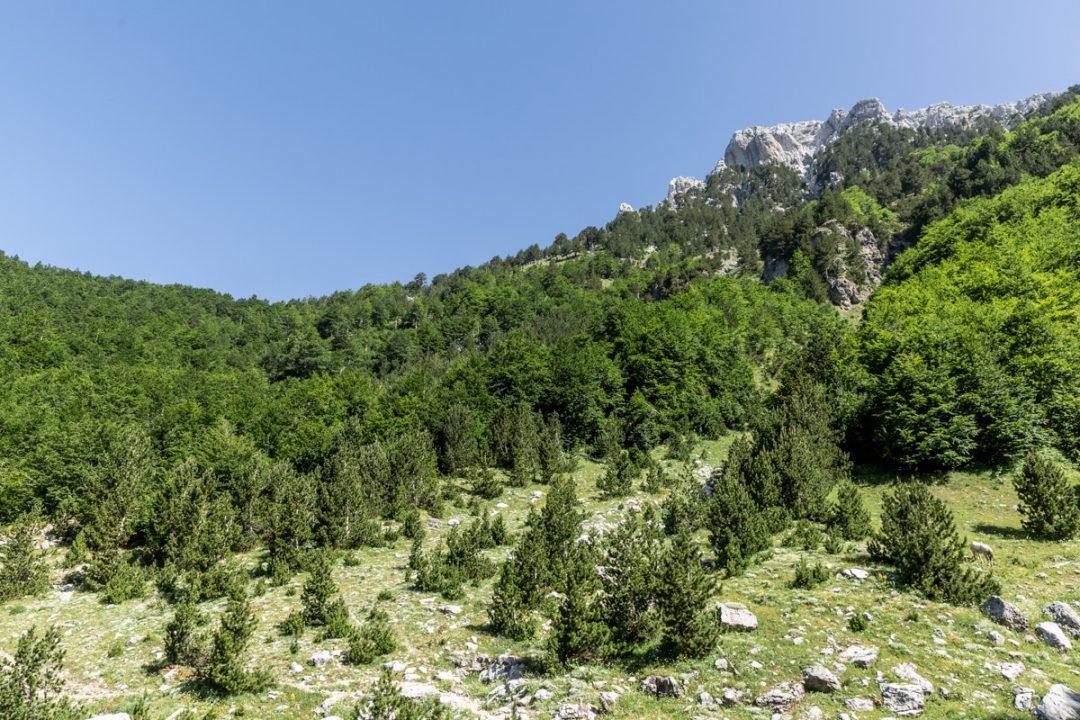 Le parc national de Theth est l'un des 12 parcs nationaux d'Albanie #albanie