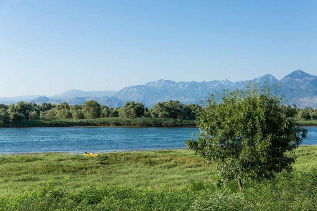 Sur les rives du lac Shkoder en albanie
