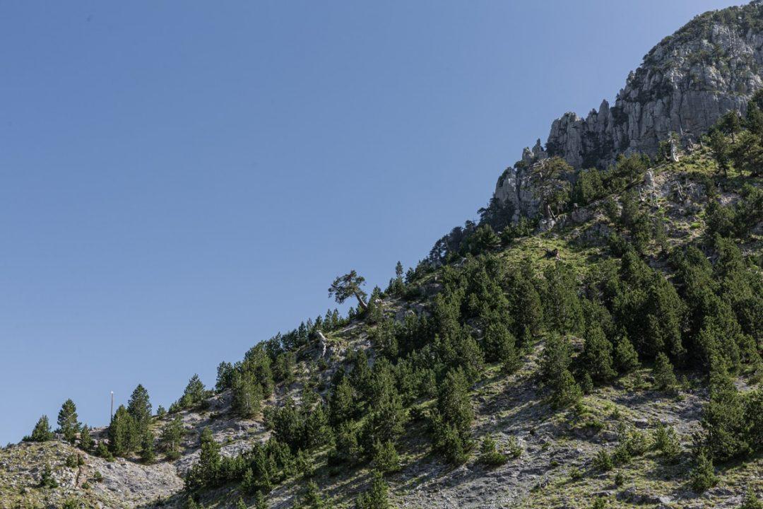 Randonner en Albanie dans les environs de Theth