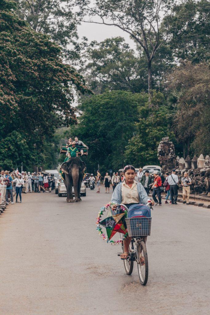 Le cambodge interdit les balades à dos d'éléphant en 2020
