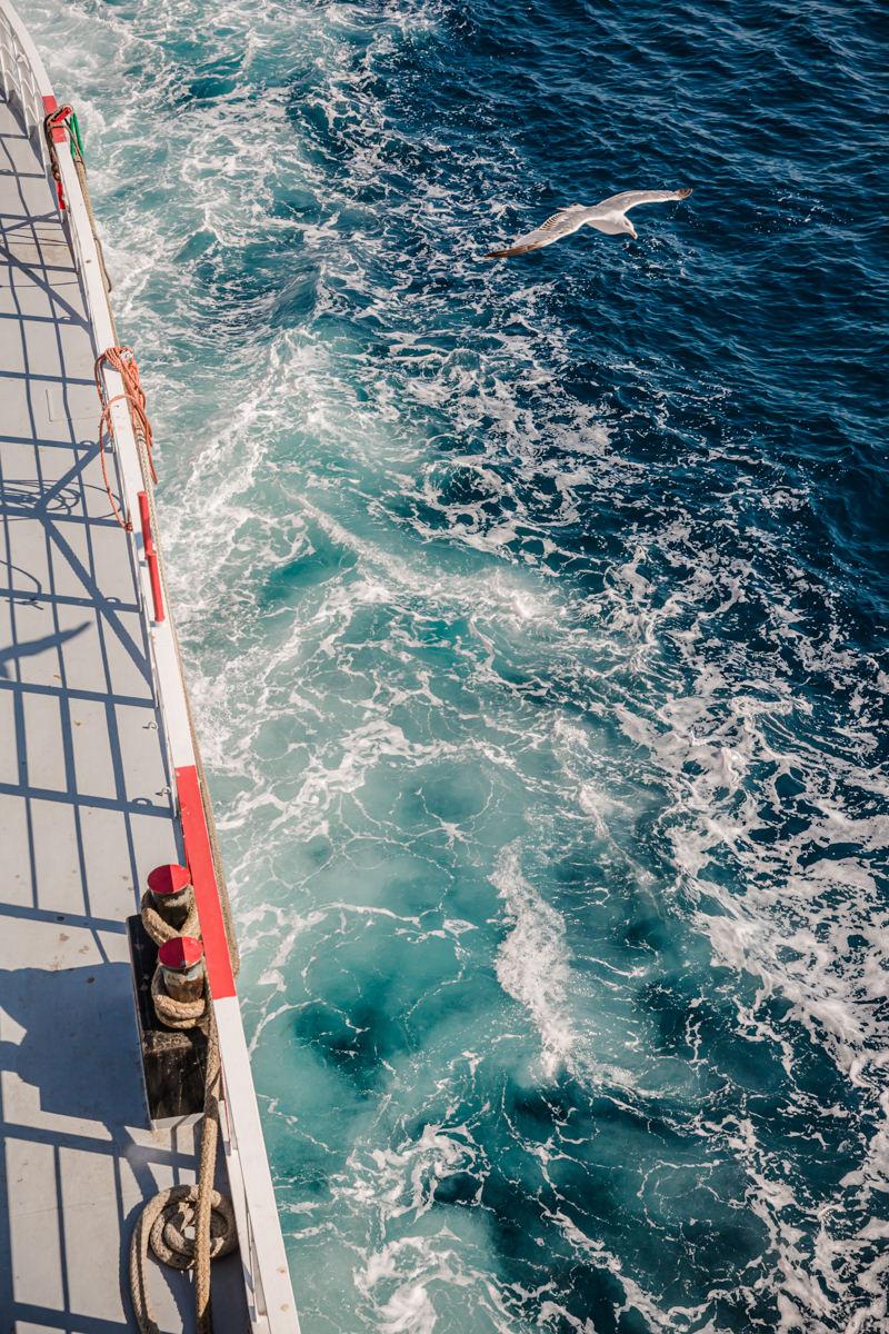 Ferry pour Thassos avec les mouettes qui volent et suivent notre bateau