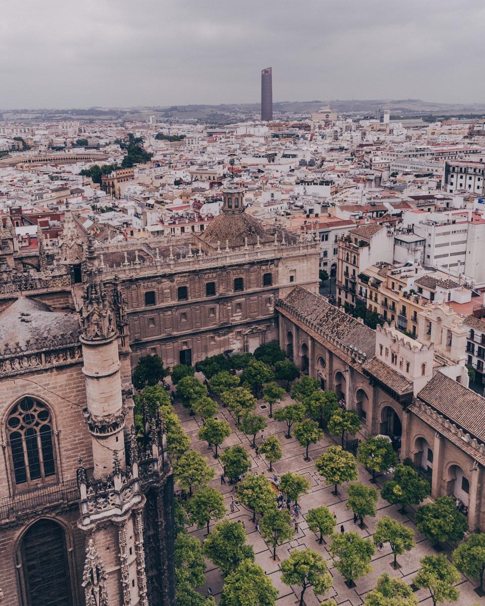 Vue sur le patio des orangers de la cathédrale de Séville depuis le haut de la Giralda