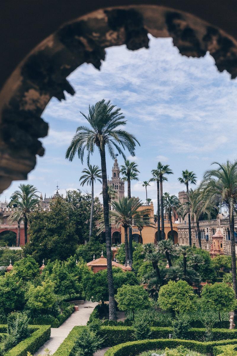 Jardins du Real Alvazar avec vue sur la Giralda - Séville, Espagne