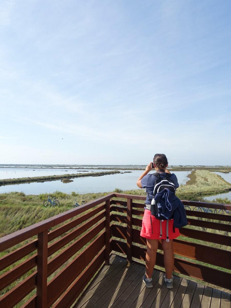 Voir des flamants roses dans le delta du Pô c'est possible. Pour les approcher de près, il faut aller découvrir le delta avec un guide de l'office de tourisme.