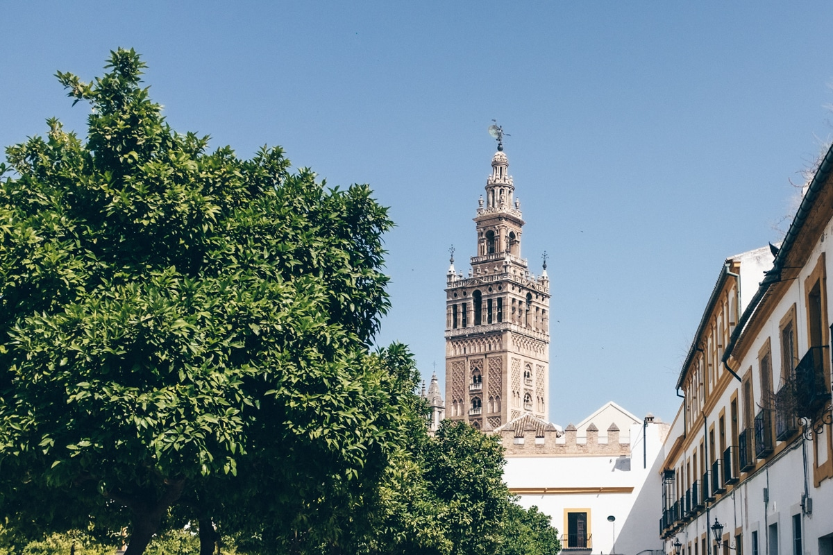 Le patio de banderas fait partie du Real Alcazar mais il est en accès libre. On y a une belle vue sur la Giralda