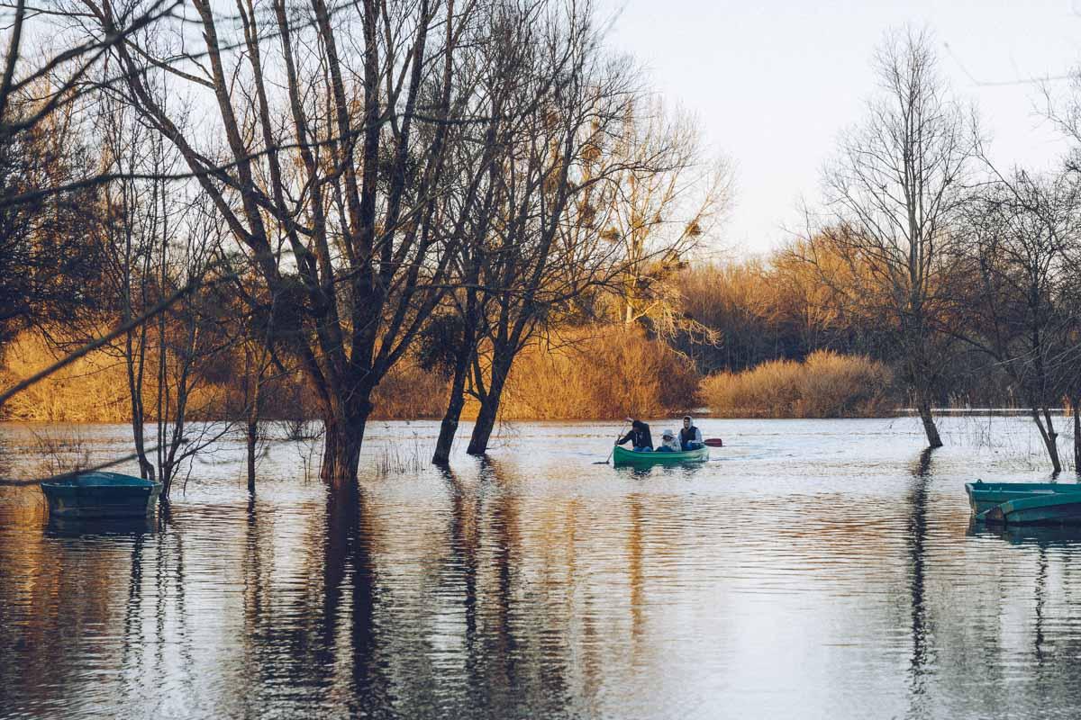 Rives inondées à Trejet sur le Lac de Grand Lieu - Loire Atlantique