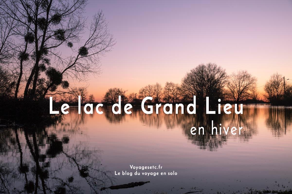 Le lac de Grand Lieu en hiver #loireatlantique