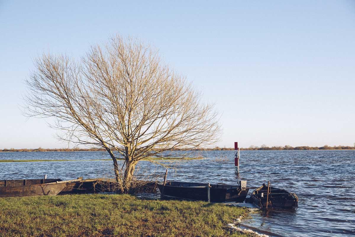 Marais inondés sur le lac de Grand Lieu - Saint Lumine de Coutais