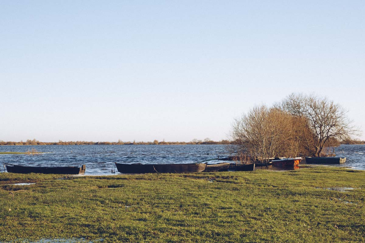 Barque du port de Saint lumine de Coutais sur le lac de Grand Lieu