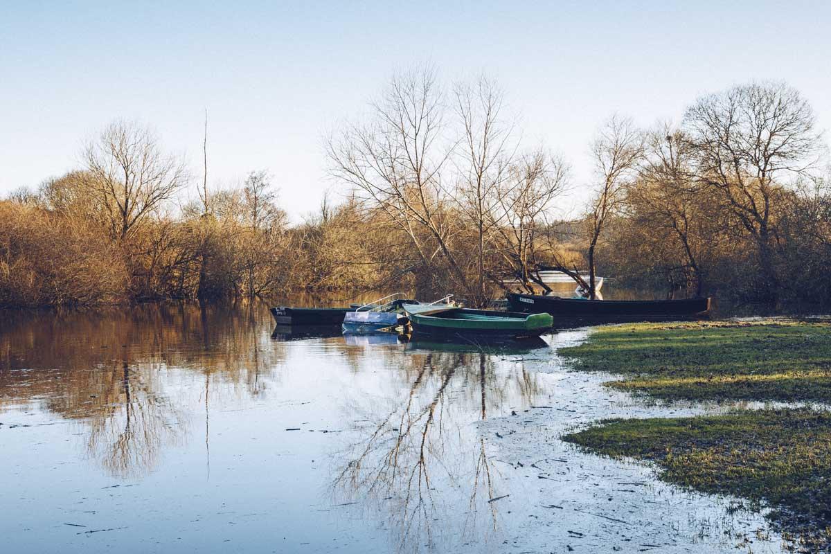 Barques sur le port de l'Halbrandière sur le lac de Grand Lieu - Loire Atlantique