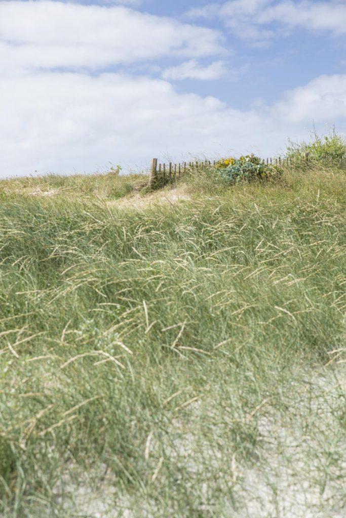 Dans les dunes de Saint Nicolas dans l'archipel des Glénan