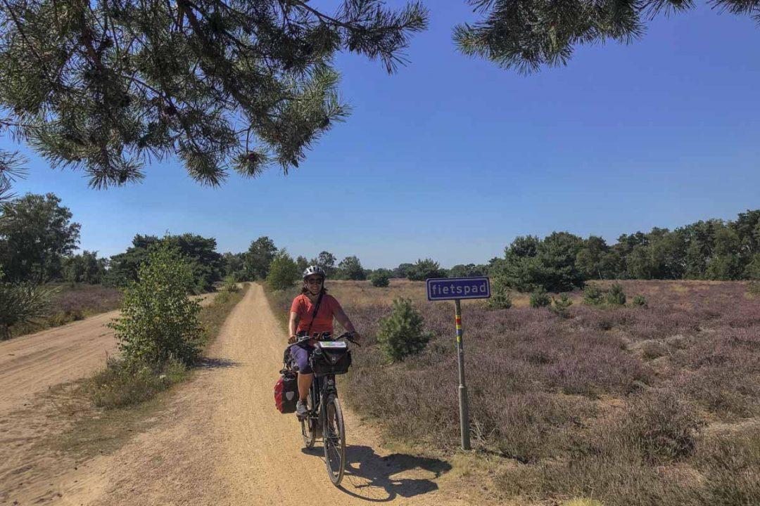 Piste cyclable dans les bruyères de la réserve Strabrechte Heide