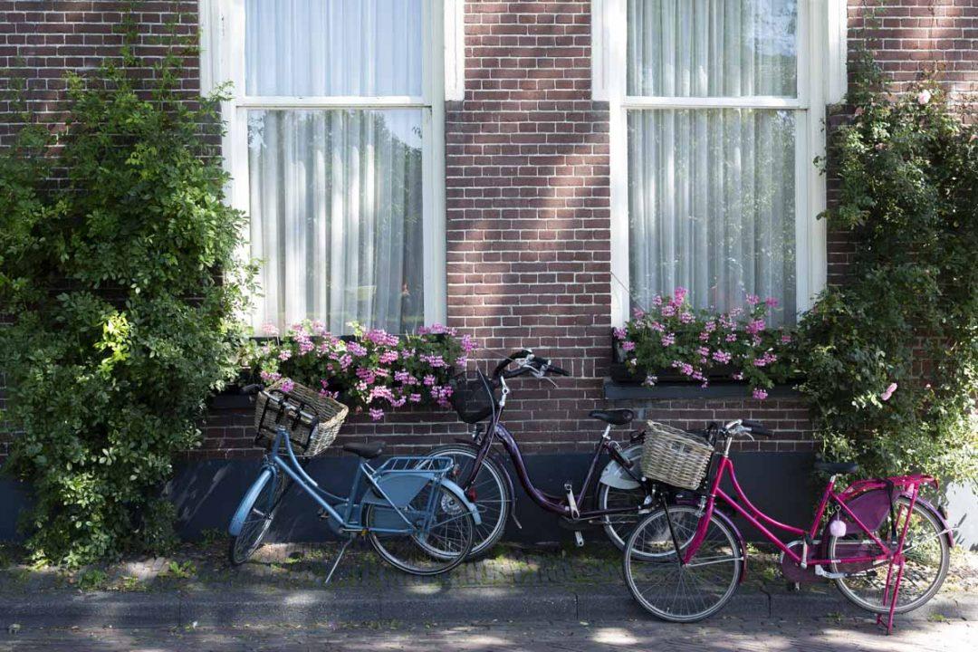 Le vélo, un art de vivre aux Pays-Bas