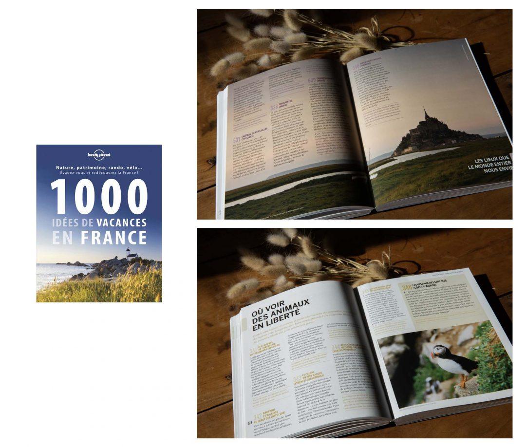 1000 idées de vacances en France Lonely Planet